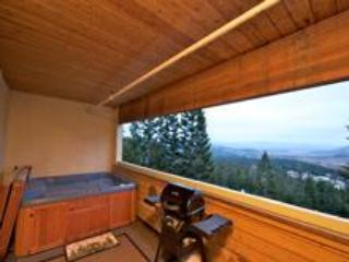 Luxury Alpine Mountainside Condo, Mammoth Lakes - Image 1 - Mammoth Lakes - rentals