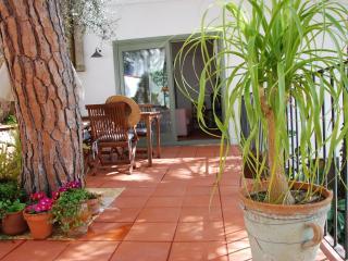 Tamariu 2 - Tamariu vacation rentals