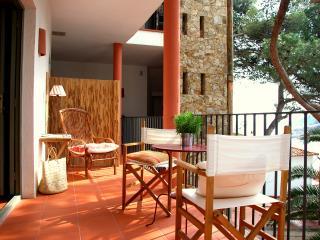 Tamariu 4 - Tamariu vacation rentals
