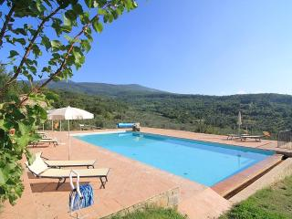 Castagnatello Country House - Vigna unit - Seggiano vacation rentals