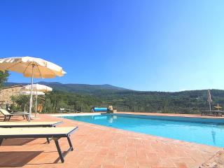 Castagnatello Country House - Ulivo unit - Seggiano vacation rentals