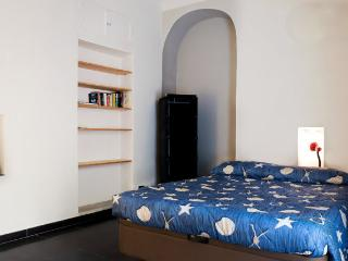 Cozy 2 bedroom apt with terrace - Corniglia - Corniglia vacation rentals