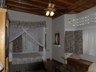 2 bedroom B&B with Internet Access in Arima - Arima vacation rentals