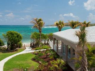 Cruzan Sands Villa! BEACHFRONT! New! Pool! Amazing Views!  Snorkel! Swim! Play! - Christiansted vacation rentals