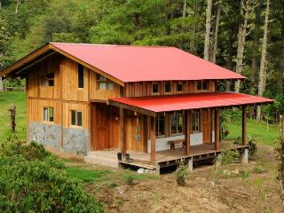 Mount Totumas Cloud Forest; Cabins in wilderness - Volcan vacation rentals