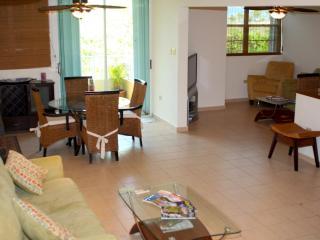 Sexy and Serene Luxury Villa for Surf Escape - Rincon vacation rentals