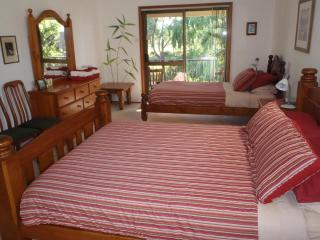 Peaceful Palms B&B - Newcastle vacation rentals