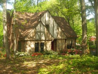 Beautiful 5BR 4 BA Lakefront Home sleeps 12 - Moneta vacation rentals