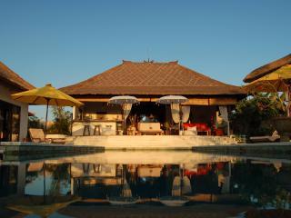 TROPICAL VILLA WITH LARGE POOL AND LUSH GARDEN - Canggu vacation rentals