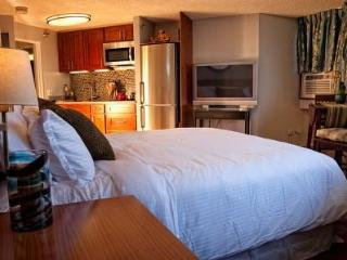 Luxury Studio With Ocean View. Free Parking! - Honolulu vacation rentals