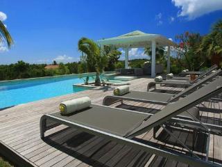Kiwi : Modern Island Breeze, Terres Basses Sxm - Terres Basses vacation rentals