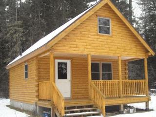 Nice Cabin with Television and Porch - Eustis vacation rentals