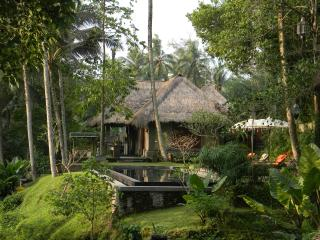 Beautiful Villa with Deck and Parking Space - Ubud vacation rentals