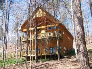 Spacious new home on Lake Hartwell - Sleeps 11 - Martin vacation rentals