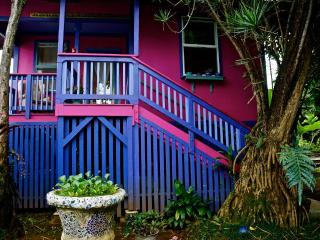 The perfect vacation stay in Downtown Hilo - Hilo vacation rentals