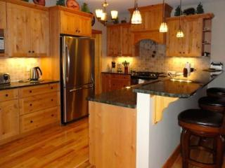 Gorgeous 3 bedroom Vacation Rental in Lake Placid - Lake Placid vacation rentals