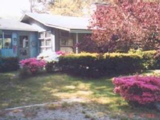 3 Bedroom Cottage, great bayside location - Image 1 - Brewster - rentals