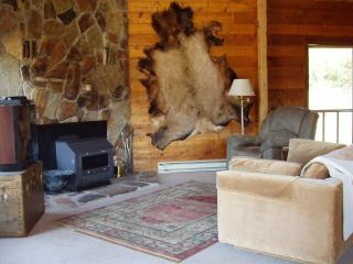 Cozy 3 bedroom Cabin in Meeker - Meeker vacation rentals