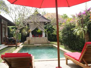Perfect 3 bedroom Villa in Sanur - Sanur vacation rentals