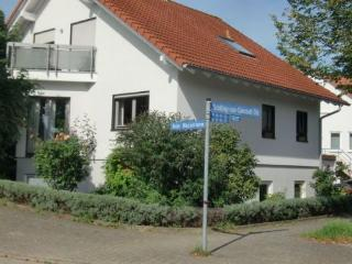 Vacation Apartment in Karlsruhe - 484 sqft, spacious, warm, friendly (# 2685) - Baden Wurttemberg vacation rentals