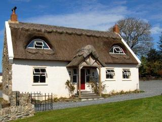 The Thatch - Portsalon vacation rentals