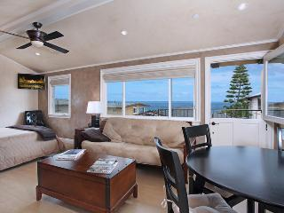 Nice 1 bedroom House in Laguna Beach - Laguna Beach vacation rentals