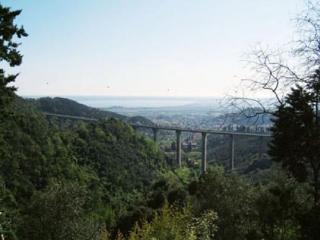 """""""MUTINO"""" countryhouse x9, hills Lucca/Viareggio - Magliano in Toscana vacation rentals"""