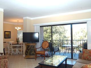 Village House 304 - Hilton Head vacation rentals