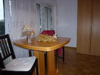 Vacation Apartment in Freiburg im Breisgau - 323 sqft, modern, comfortable, warm (# 2700) - Freiburg im Breisgau vacation rentals