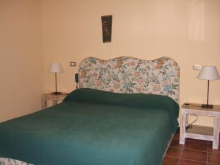 Nice Bed and Breakfast with Internet Access and A/C - Caserta vacation rentals
