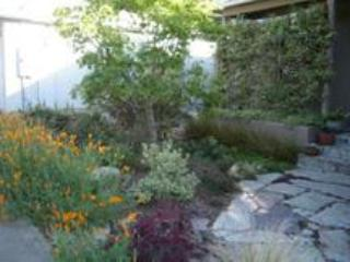 Serene, Eco-Friendly Rooms/House in North Berkeley - Berkeley vacation rentals