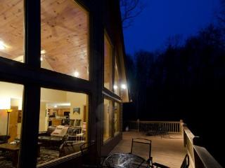 Artist's Retreat, *new cabin special*, hot tub - Ellijay vacation rentals