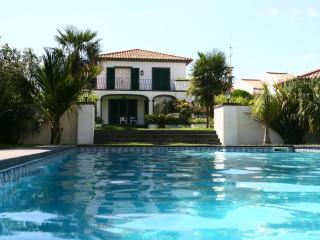Casa dos Agapantos - Studio in Ponta Delgada - Ponta Delgada vacation rentals
