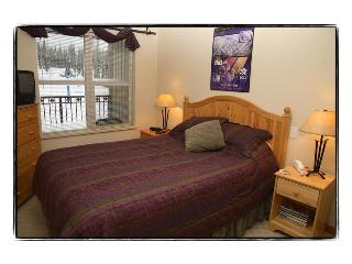 Snowbrush Creekside Ski In /Ski out - Vernon vacation rentals