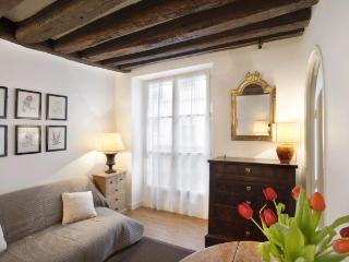 A bright and spacious apartment on the Île de la Cité just a stone's throw from Notre Dame Cathedral - Paris vacation rentals