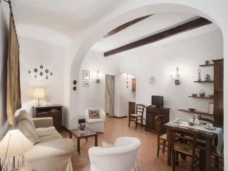 Nice apt in the centre of Florence (Palais Pitti) - Florence vacation rentals
