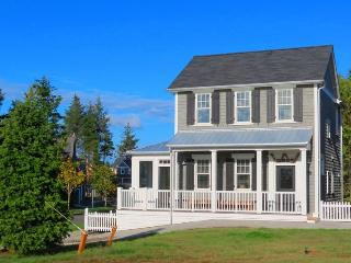 Tide Together - Pacific Beach vacation rentals
