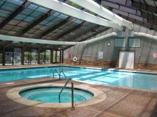 Grand Oaks RQ3 -  level entry, access to pools - Banner Elk vacation rentals