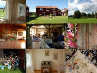 Comfortable Cottage with Internet Access and Mountain Views - Siljansnas vacation rentals