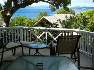 Island Breeze Apartment - Virgin Gorda vacation rentals