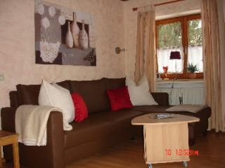 Vacation Apartment in Garmisch-Partenkirchen - 646 sqft, central, comfortable (# 2726) - Garmisch-Partenkirchen vacation rentals