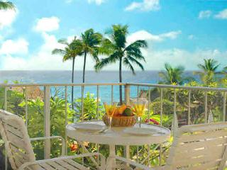 full ocean view, easy walk, Poipu Beach -no extras - Poipu vacation rentals