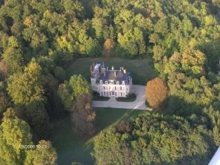 Affordable luxury castle in Champagne area France - Mussy-sur-Seine vacation rentals