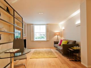 Globe Apartments - Wigmore Suites - One Bedroom - London vacation rentals