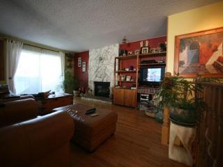 Apartment 30 min from downtown Vancouver - Coquitlam vacation rentals