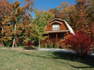 Lookout Mountain cottage, Chestnut Oak - Lookout Mountain vacation rentals