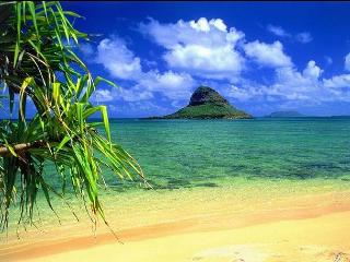 Your own Beachfront Bungalow only $240 per night - Haleiwa vacation rentals