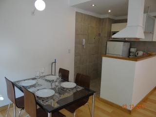 Impecable studio in Palermo Soho - Buenos Aires vacation rentals