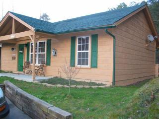 Gatlinburg Cabin, no mtns to climb 3 bedroom - Pigeon Forge vacation rentals