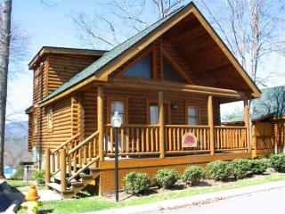 log cabin 2 blocks off parkway with mountain views - Pigeon Forge vacation rentals